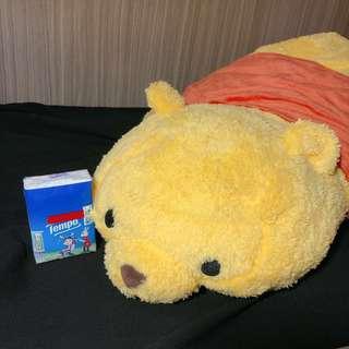 🐻🍯Winnie the pooh 小熊維尼 趴地系列 抱枕 大公仔