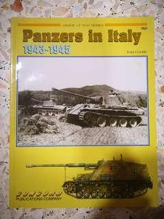 Panzers in Italy