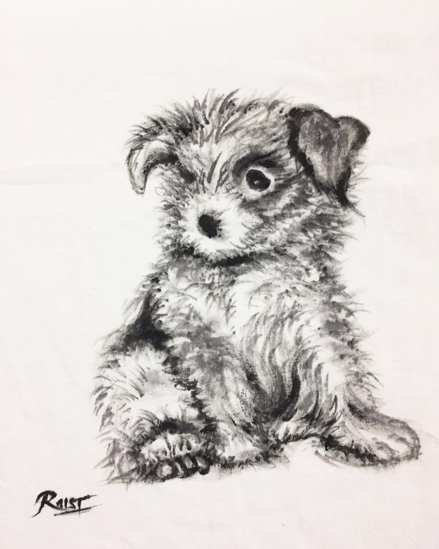 05c11805879d3 Brand new painted cute puppy dog white t-shirt