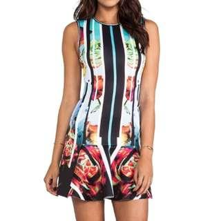 Clover Canyon Rose Stripe Neoprene Printed Dress