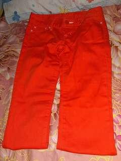 Moussy Orange Pants