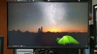 PRISM+ 4k monitor