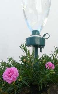 Simple Automated Drip Watering System for Vacation
