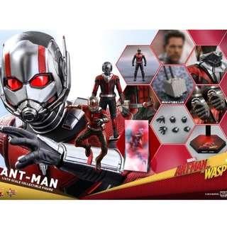 蝕讓  Hottoys antman 蟻俠 8月7日訂單 mms497 hot toys