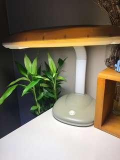 Toyomi Desk Lamp