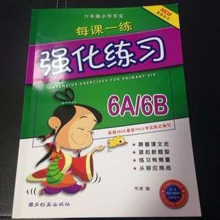 P6A/6B 强化练习 Assessment Book