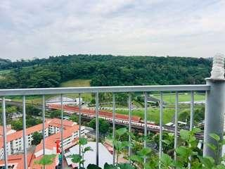 Rare 4 Bedrooms Penthouse For Sale -5 Mins to Bukit Gombak Mrt