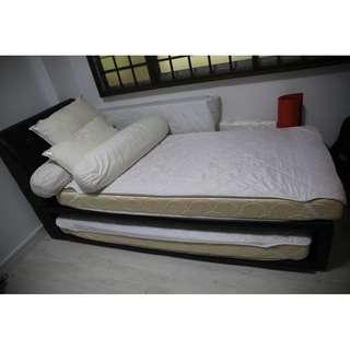 Price reduced! Single+Pull-out Bed