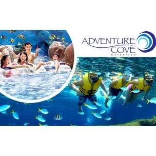Adventure Cove Water Park     Adventure Cove Water Park       Adventure Cove Water Park