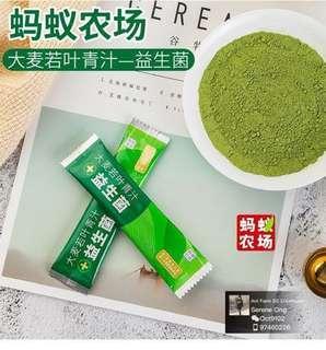 Barley Grass Green Juice Probiotics