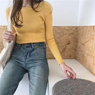 INSTOCKS Yellow Basic Knitted Long Sleeve Top