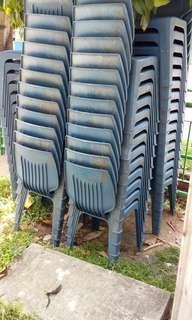 100pcs kopi thim chair
