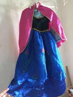 FROZEN Costumes/Anna Dress