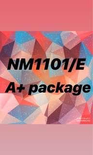 NM1101E A Package & EBOOK NM1101
