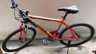 Aleoca Mountain Bike, 7 Speed gear