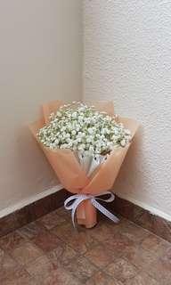Baby's breath | Valentine's day flower