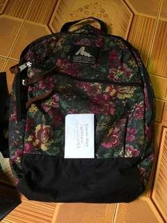 Gregory backpack 22L used