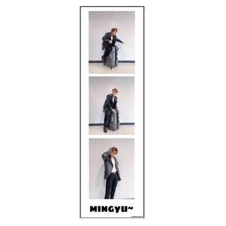 [interest check] mingyu photostrip