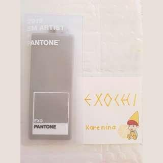 EXO PANTONE™ LUGGAGE TAG