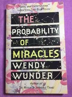 The Probability of Miracles (Wendy Wunder)