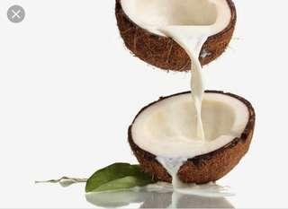 Santana real coconut Milk