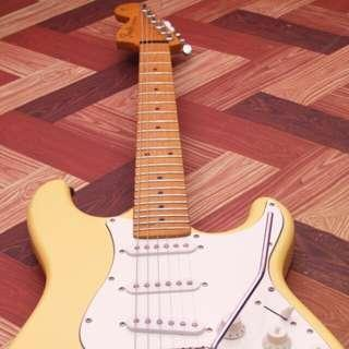 Stratocaster Project Guitar