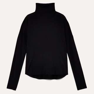 Aritzia Seaton Shirt