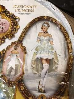 Cinderella Costume Size M
