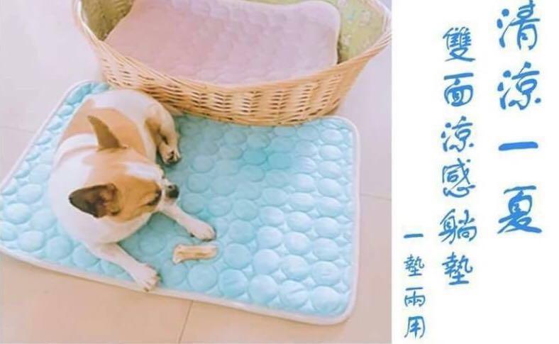 寵物 涼墊 藍L