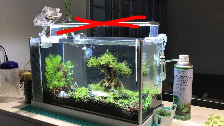 Decomm Ios Nano Tank Bigger Than Fluval Spec V Pet Supplies For Fish Fish Tanks On Carousell