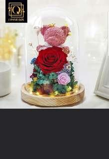 INSTOCK PRESERVED ROSE WITH BEAR