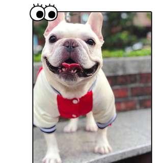 🚚 法鬥 巴哥 特別版型 紅色刺繡 哩厚橫須賀古著厚外套 寵物服飾 保暖 大推(數量極少)
