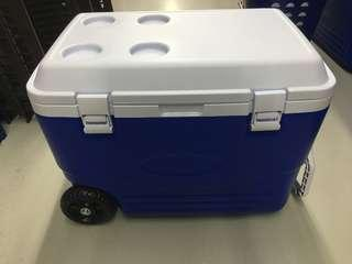 Brand New Cooler Box
