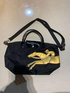 Longchamp Shoulder Bag (Non Authentic) But looks real