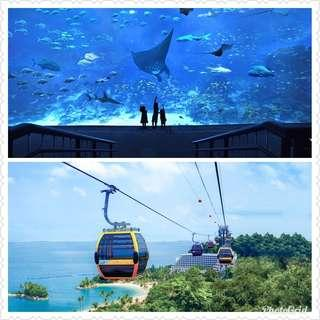 Sea Aquarium with Maritime Museum + Cable Car