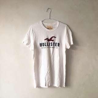 🚚 Holister 海鷗t shirt