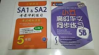 Primary 5 Chinese Assessment Books