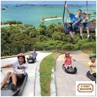 Luge Skyride Open Date Etickets (2-rounds)