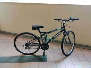2 Aleoca bikes