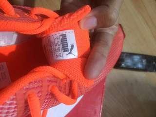 Sepatu Puma Women ORI