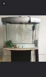 Aquarium with table