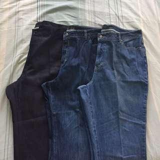 Plus Size Pants and Denim Jeans