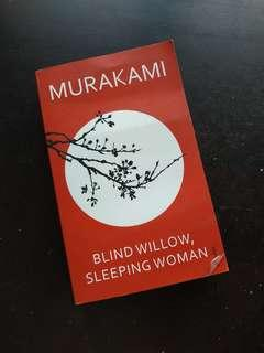 Blind willow sleeping woman