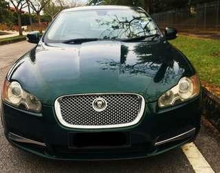 Jaguar for rent