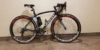 Ridley liz full carbon bike