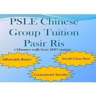 PSLE Chinese Group Tuition - Pasir Ris