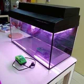 2 Feet Used Aquarium with Top Cover