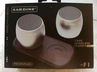 Twin Wireless Bluetooth Speakers