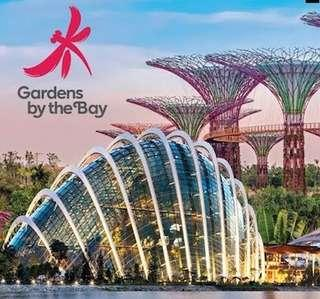 🚚 Gardens By The Bay (Child)
