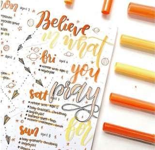 Orange Themed Bullet Journal